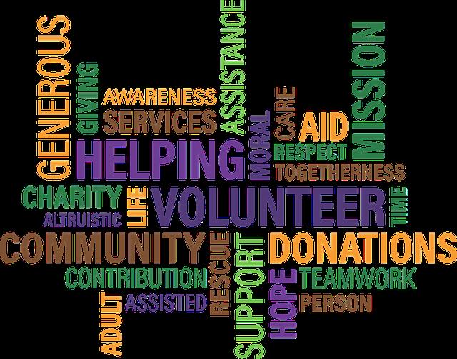 dobrovolník a charita.png