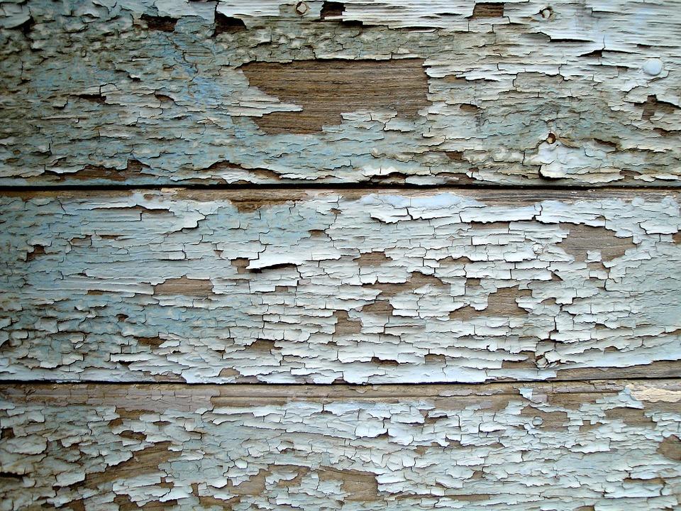 oprýskané dřevo